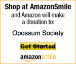 Amazon Smiles Donations
