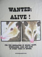 Opossum Wanted Poster T-shirt