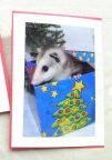 Opossum Christmas Cards