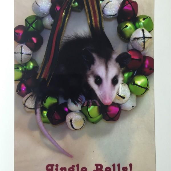 Jingle-Bells-Opossum-Card