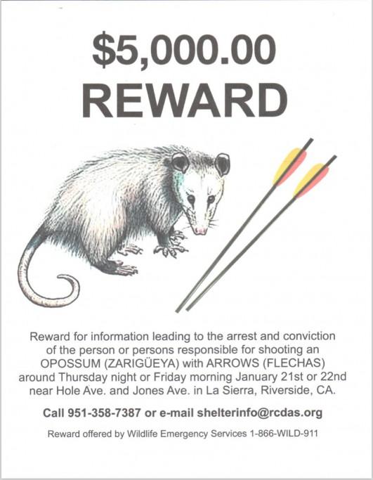 Reward-Poster