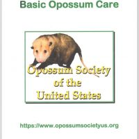 Basic Opossum Care Handbook