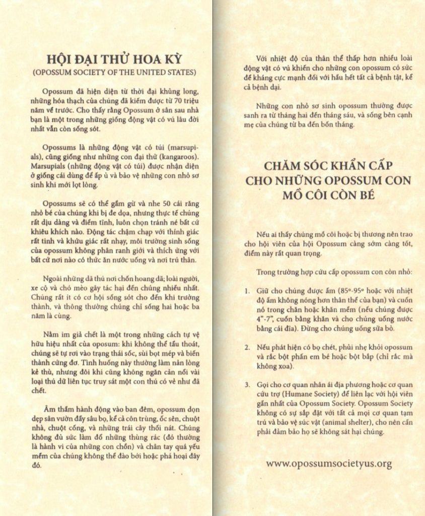 OSUS Vietnamese Brochure